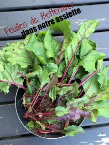 5 façons d'utiliser les feuilles de betteraves Cinq Fourchettes