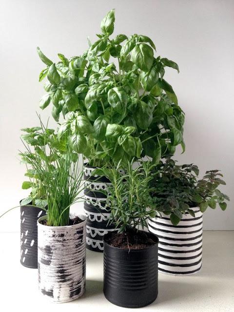 idée cadeaux de profs Fines herbes