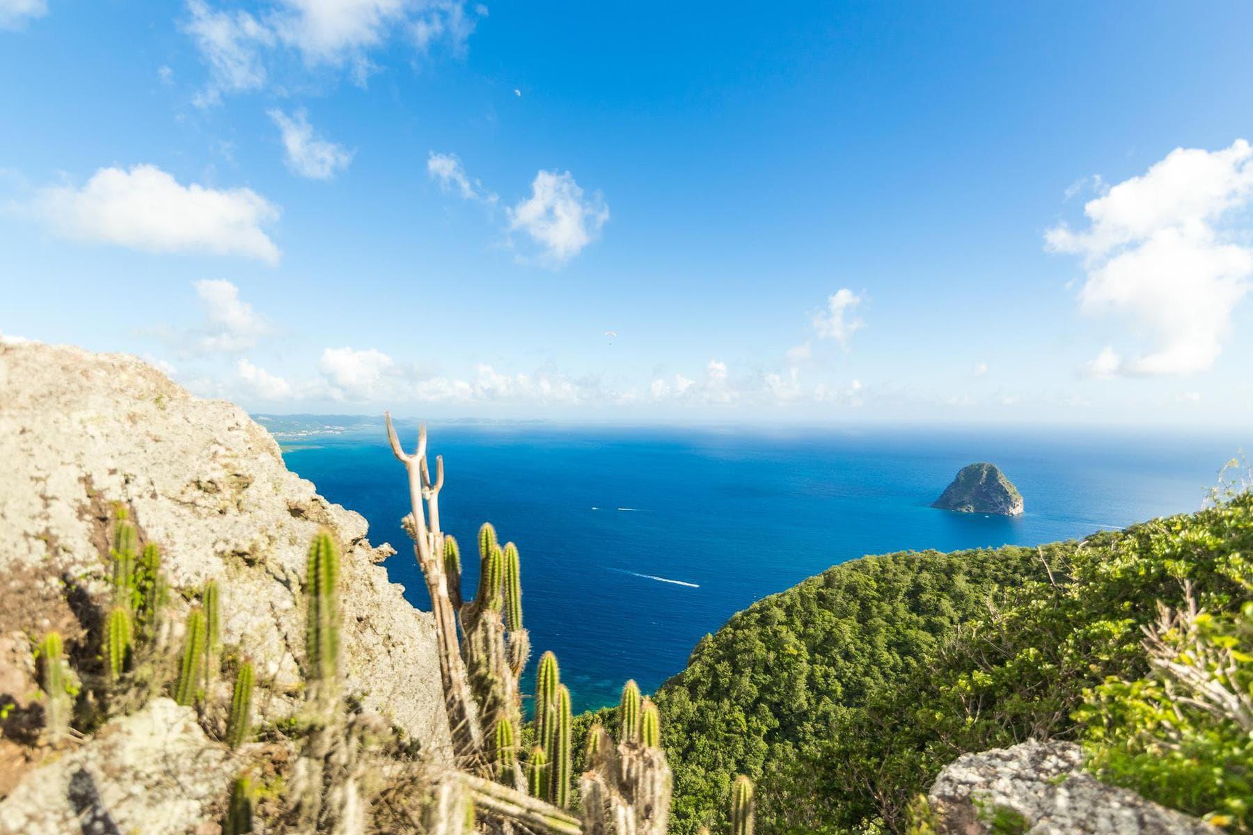 Sortie : Martinique Gourmande 2017 / Cinq Fourchettes