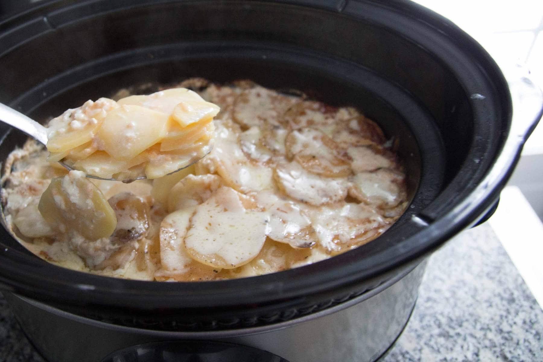 Gratin de pommes de terre à la MIJOTEUSE / Cinq Fourchettes